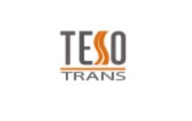 teso_logo